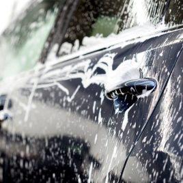 CAR PLUS Shampoo carrocería Automóvil