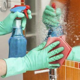 DETERGOL BAÑO Bactericida y Sanitizante.