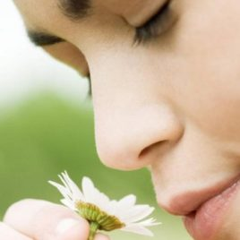DESINFECTOL DX Neutraliza olores